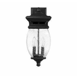 Reviews Hultgren 2-Light LED Outdoor Sconce By Alcott Hill