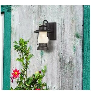 Caratunk 1-Light Outdoor Wall Lantern
