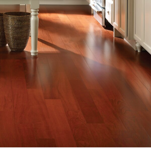 Easoon Usa 3 1 2 Engineered Brazilian Cherry Hardwood Flooring In Clic Wayfair