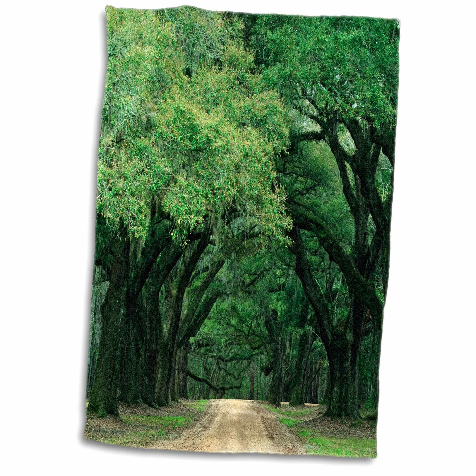 East Urban Home Cross Usa South Carolina Spanish Moss Covered Trees Line A Road Hand Towel Wayfair