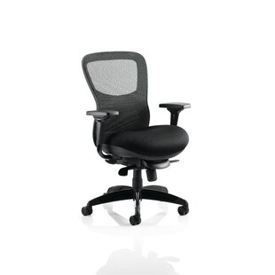 Higgins High-Back Mesh Desk Chair By Ebern Designs