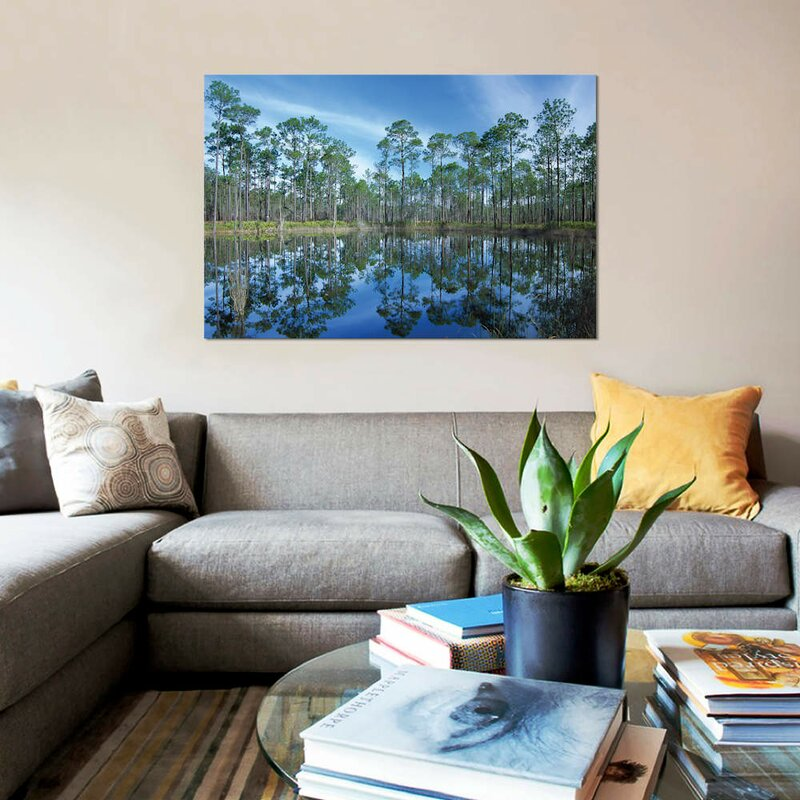 East Urban Home Pine Forest Mirrored In Reflection Pond Ochlocknee River State Park Florida Photographic Print On Canvas Wayfair