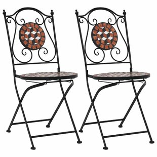 Ziemba Folding Garden Chair (Set Of 2) By World Menagerie