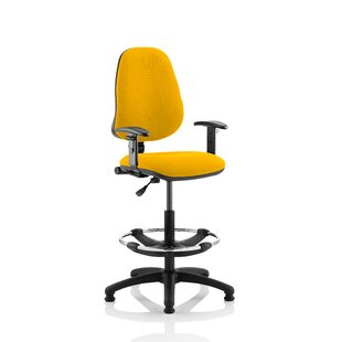 Eclipse Ergonomic Office Chair By Home & Haus