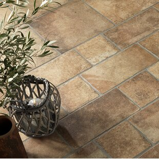 Newberry 8 x 8 Porcelain Field Tile in Cotto by Emser Tile