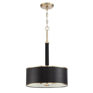 Breakwater Bay Zheng 3-Light Pendant