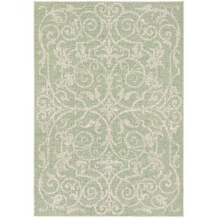 Green Outdoor Rugs You\'ll Love | Wayfair