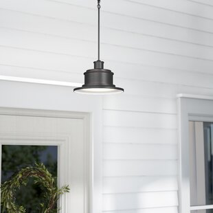 Laurel Foundry Modern Farmhouse Nightingale 1-Light Outdoor Pendant