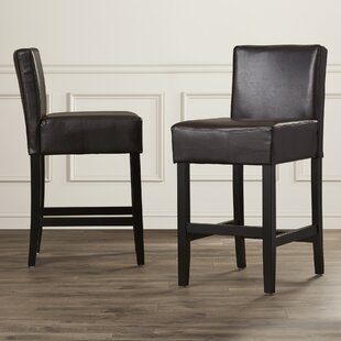 Kassik 24 Bar Stool (Set of 2) Red Barrel Studio