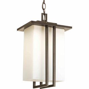 Low priced Triplehorn 1-Light Hanging Bronze Lantern By Alcott Hill