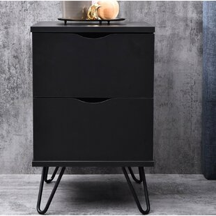 Saylor 2 Drawer Bedside Table By Mercury Row