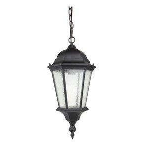 1-Light Outdoor Hanging Lantern