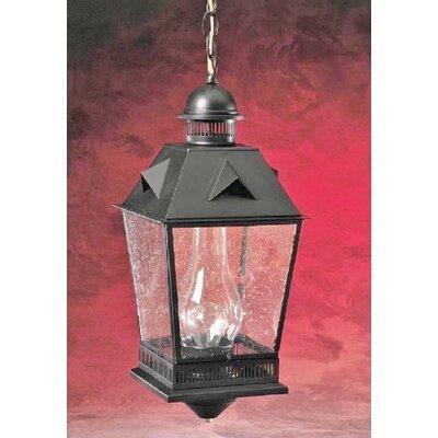 Outdoor Hanging Lantern Br