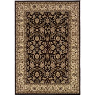 Searching for Copacabana Isfahan/Ebony Area Rug By Astoria Grand