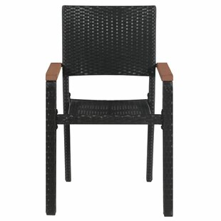 Frausto Garden Chair By Sol 72 Outdoor