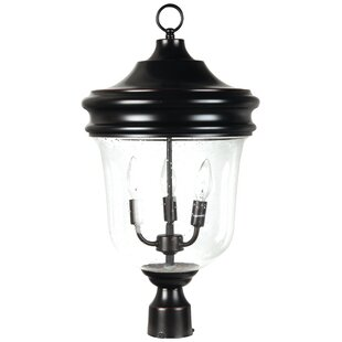 Collinson 3-Light Lantern Head by Alcott Hill