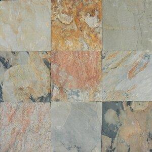 Autumn 12'' x 12'' Slate Field Tile in Multi
