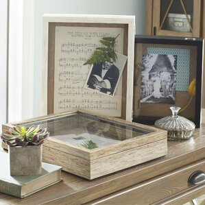 roselle shadow box - Shadow Box Frames