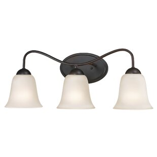 Looking for Cathy 3-Light Vanity Light By Winston Porter