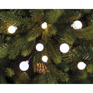 80 Berry LED Fairy Light By The Seasonal Aisle