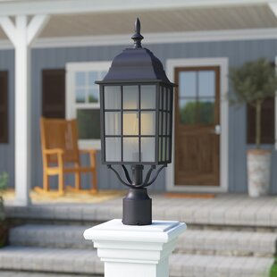 Charlton Home Faning Outdoor 1-Light Lantern Head