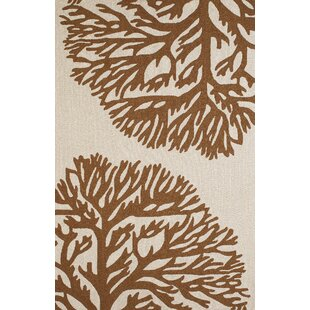 Coral Gables Hand-Woven Chocolate/Beige Indoor/Outdoor Area Rug