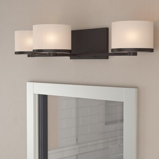 Curtin 3-Light Vanity Light by..