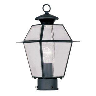 Three Posts Orchard Lane Outdoor 1-Light Lantern Head