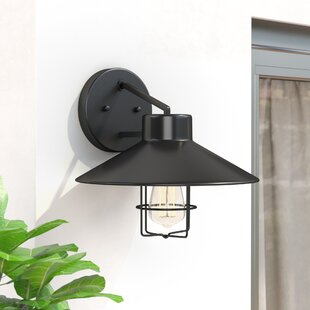 Dan LED Wall Outdoor Barn Light