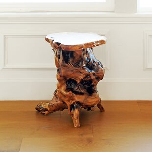 Root Wood End Table