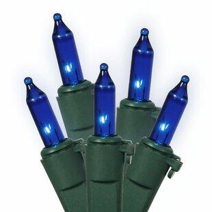 Vickerman 50 Light Bulk Set