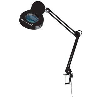 Magnifier Desk Lamp