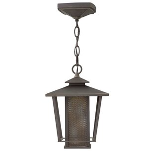 17 Stories Sullivan 1-Light LED Outdoor Mini Pendant