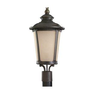 Fleur De Lis Living Maria 1-Light Lantern Head