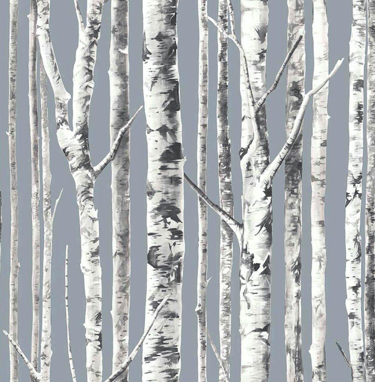 Foundry Select Lugo Birch Tree 9 L X 27 W Peel And Stick Wallpaper Roll Wayfair