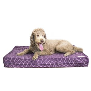 Purple 5u201d Thick Soft/Firm Reversible Gel Memory Foam Orthopedic Dog Bed