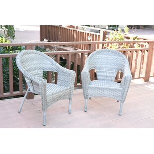 Resin Wicker Chairs Wayfair