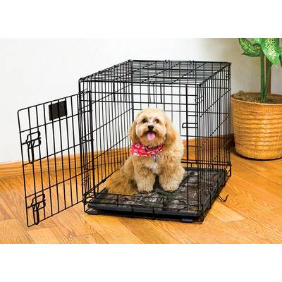 Browder Dog Double-Door Folding Cage with Divider for Training Pet Crate
