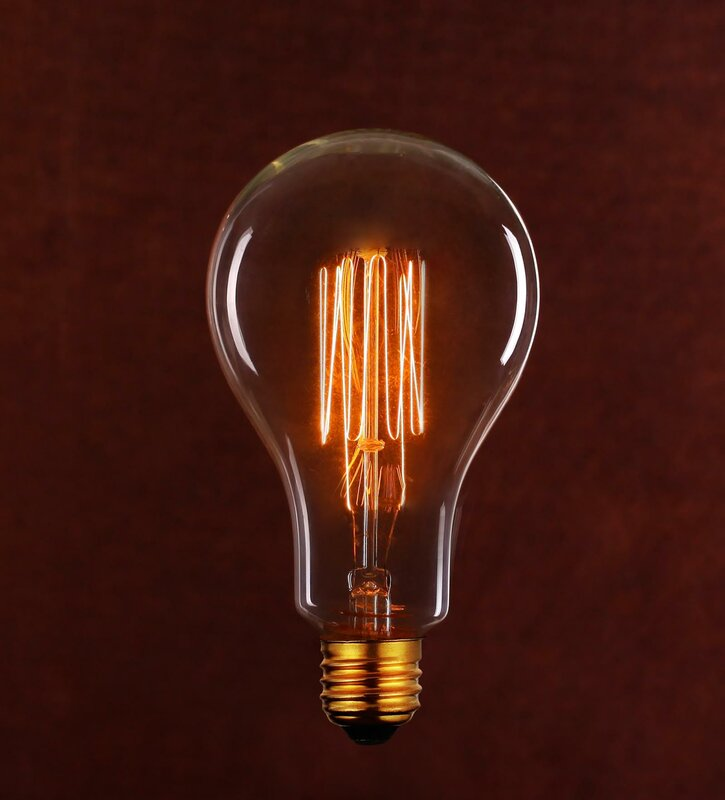 String Light Co Vintage Edison Light Bulb (Pack of 6) & Reviews ...