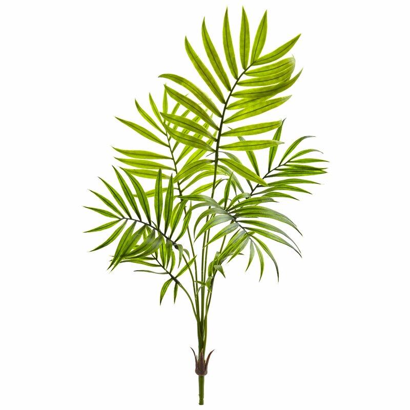 Bay Isle Home Mini Areca Palm Plant Wayfair