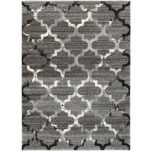 Shopping for Galloway White/Light Gray Indoor Area Rug By Willa Arlo Interiors