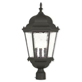 Buy luxury Busse 3-Light Lantern Head By Darby Home Co