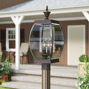 Vieux Outdoor 3-Light Lantern Head by Lark Manor