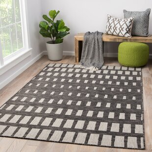 Nikki Chu Dark Gray Indoor/Outdoor Area Rug by Nikki Chu New