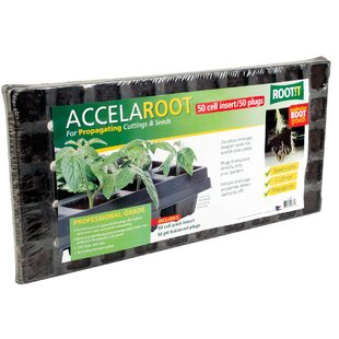 Accelaroot Starter Plugs With 50 Cell Insert By Hydrofarm