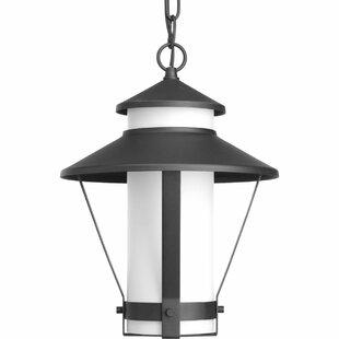 Red Barrel Studio Palice 1-Light Hanging Lantern