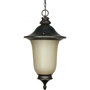 Nuvo Lighting Parisian 1-Light Outdoor Pendant