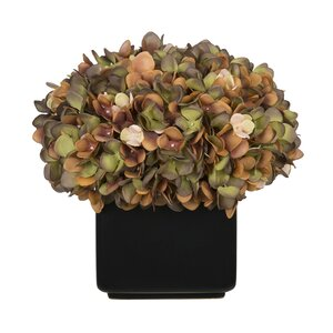 Hydrangea Arrangement in Large Black Cube Ceramic