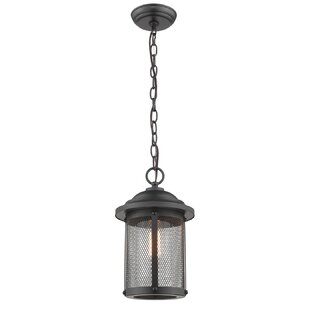 Genevieve 1-Light Outdoor Hanging Lantern
