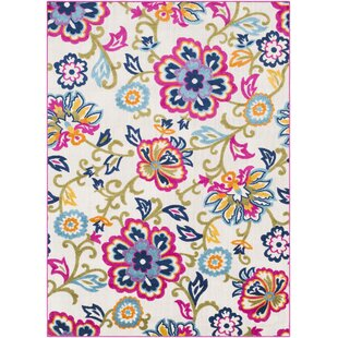 Find for Avonmore Bright Pink/Cream Outdoor Area Rug By Ebern Designs